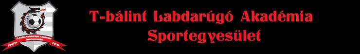 logo_fejlec_tbalint_lase_740_111.png